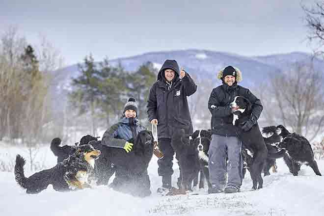 Three Mira employees playing with dogs in the snow